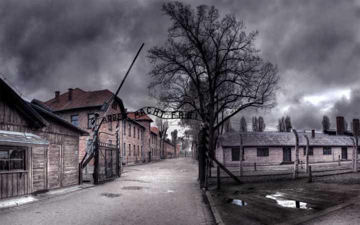 Auschwitz: un'esperienza potente, unica,sconvolgente